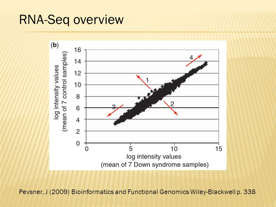RNA-Seq overview Pevsner, J (2009) Bioinformatics and Functional Genomics Wiley-Blackwell p. 338