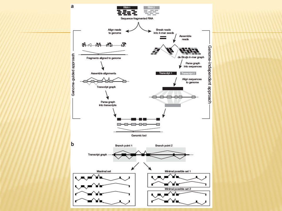 Figure 2 | Transcriptome reconstruction methods