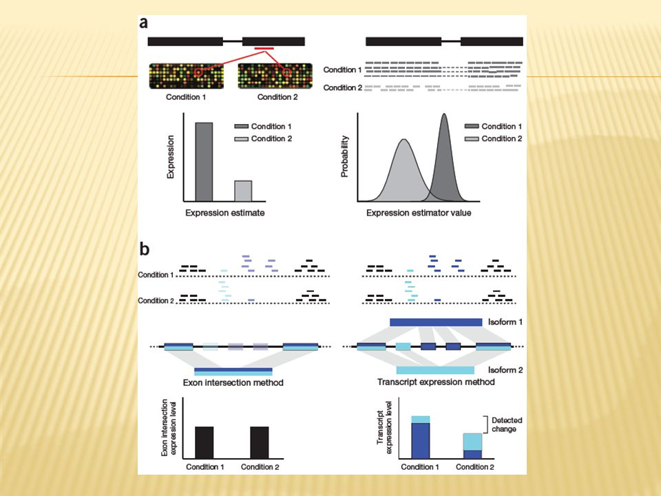 Figure 4 | Overview of RNA-seq differential expression analysis.