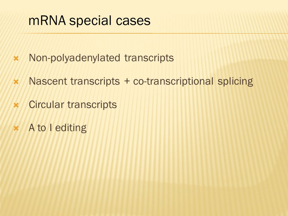 mRNA special cases Non-polyadenylated transcripts