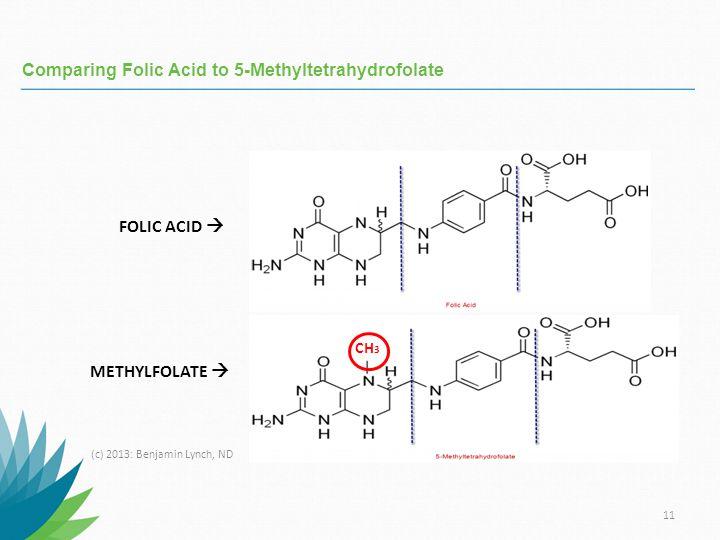 Comparing Folic Acid to 5-Methyltetrahydrofolate