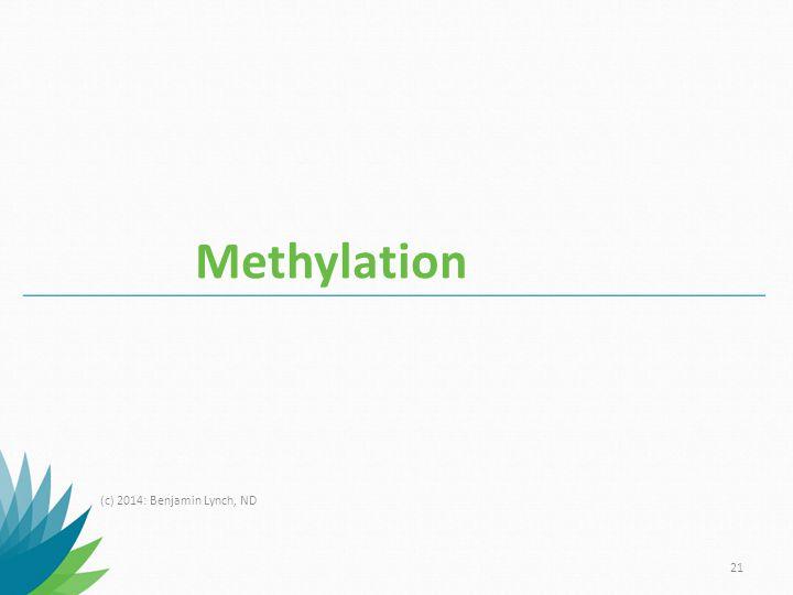 Methylation (c) 2014: Benjamin Lynch, ND