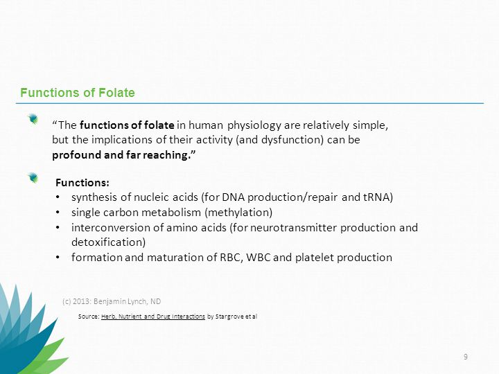 synthesis of nucleic acids (for DNA production/repair and tRNA)