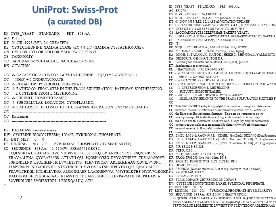UniProt: Swiss-Prot (a curated DB)