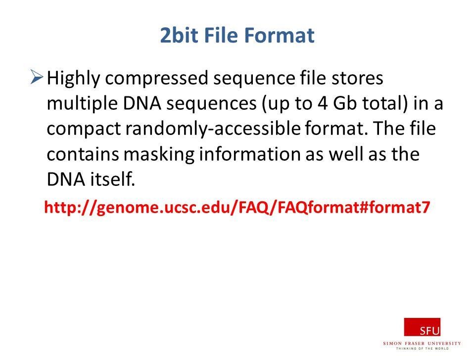 2bit File Format
