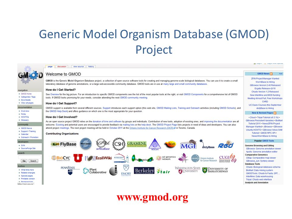 Generic Model Organism Database (GMOD) Project