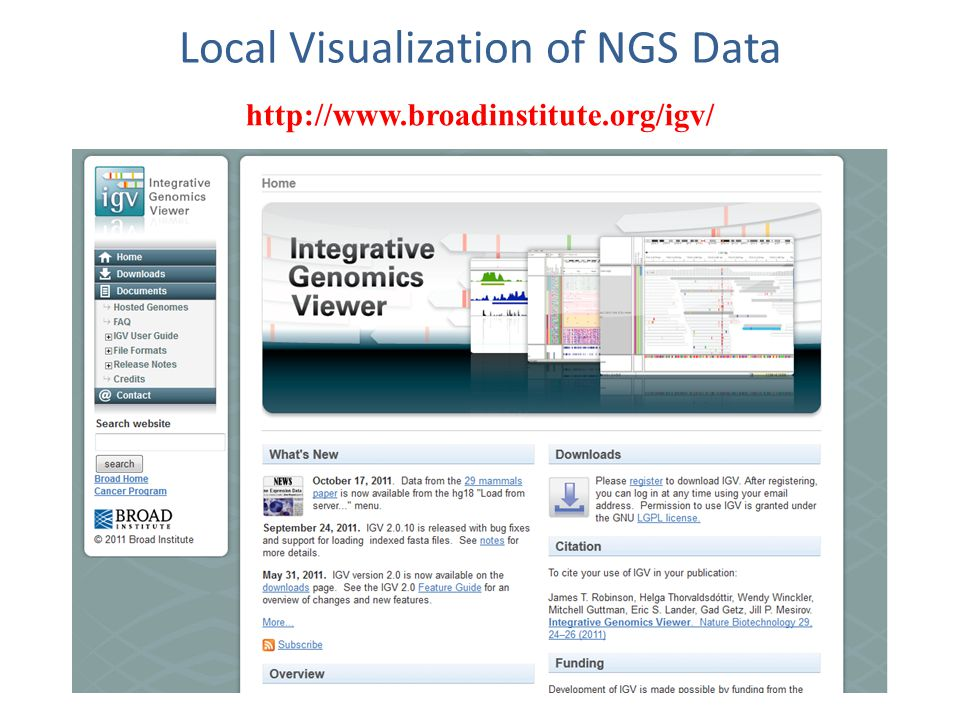 Local Visualization of NGS Data