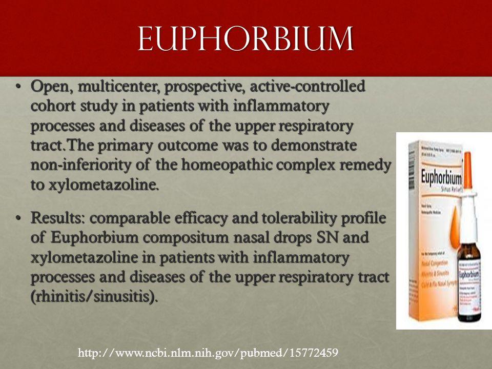 Euphorbium
