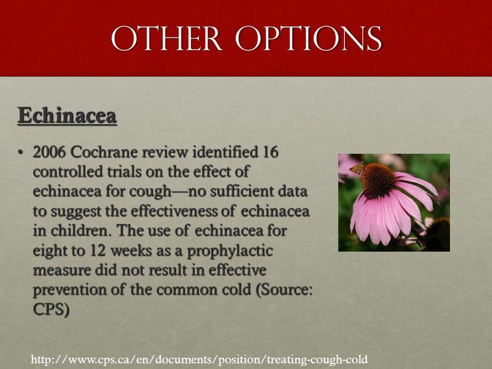 Other Options Echinacea