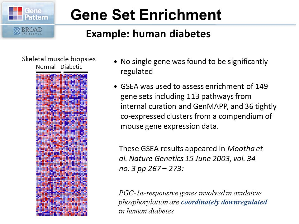 Example: human diabetes