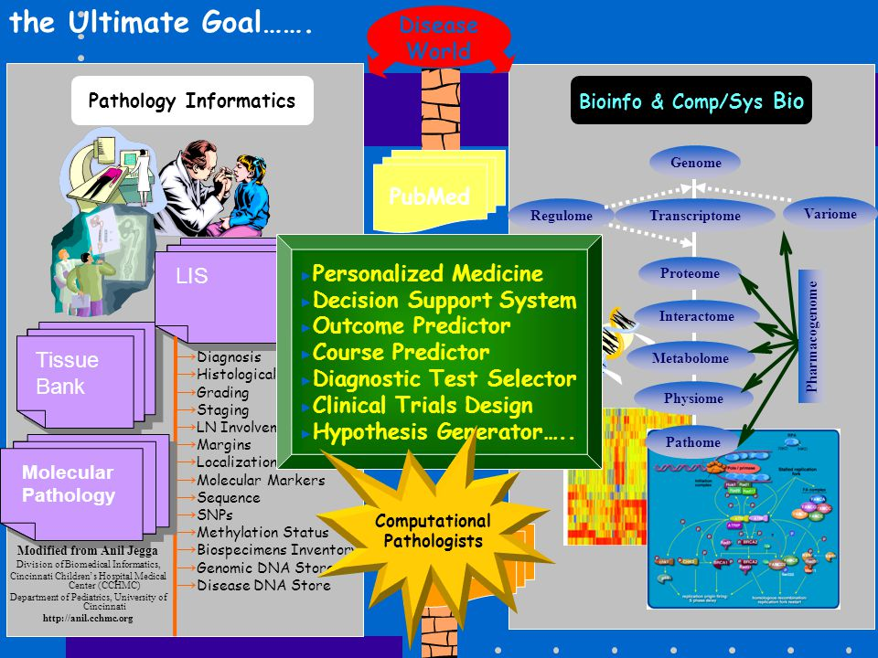 Computational Pathologists Pathology Informatics
