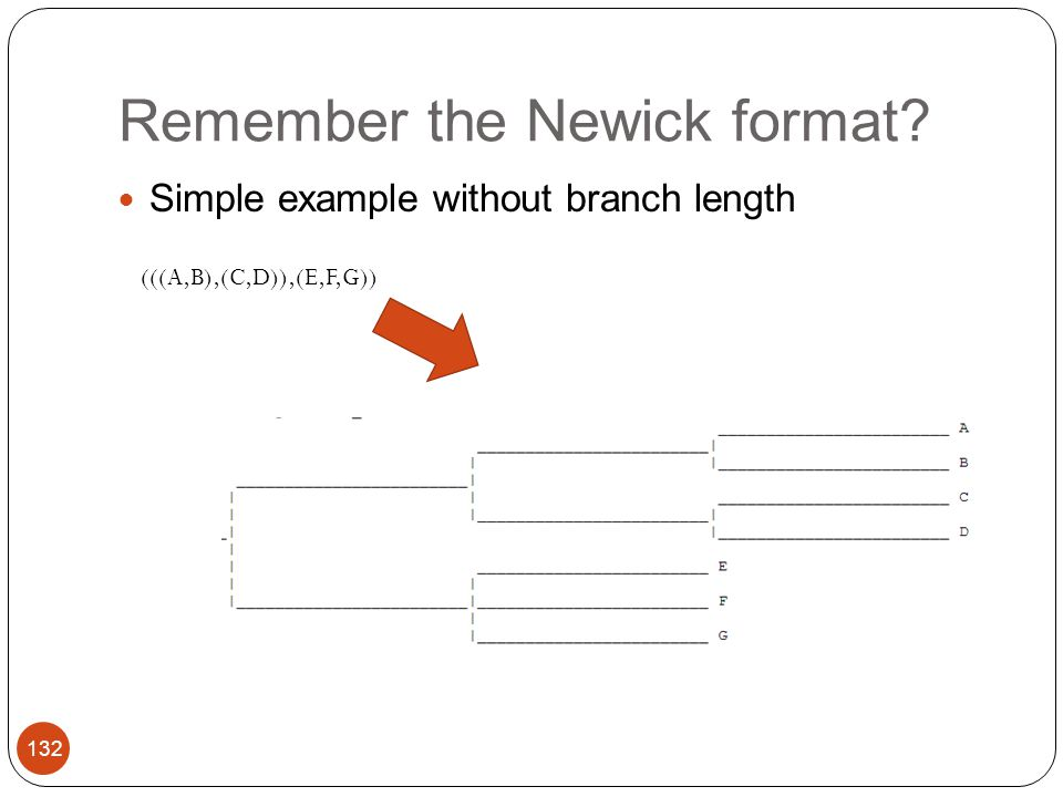 Remember the Newick format