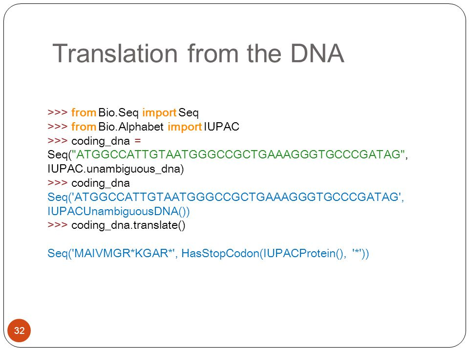 Translation from the DNA