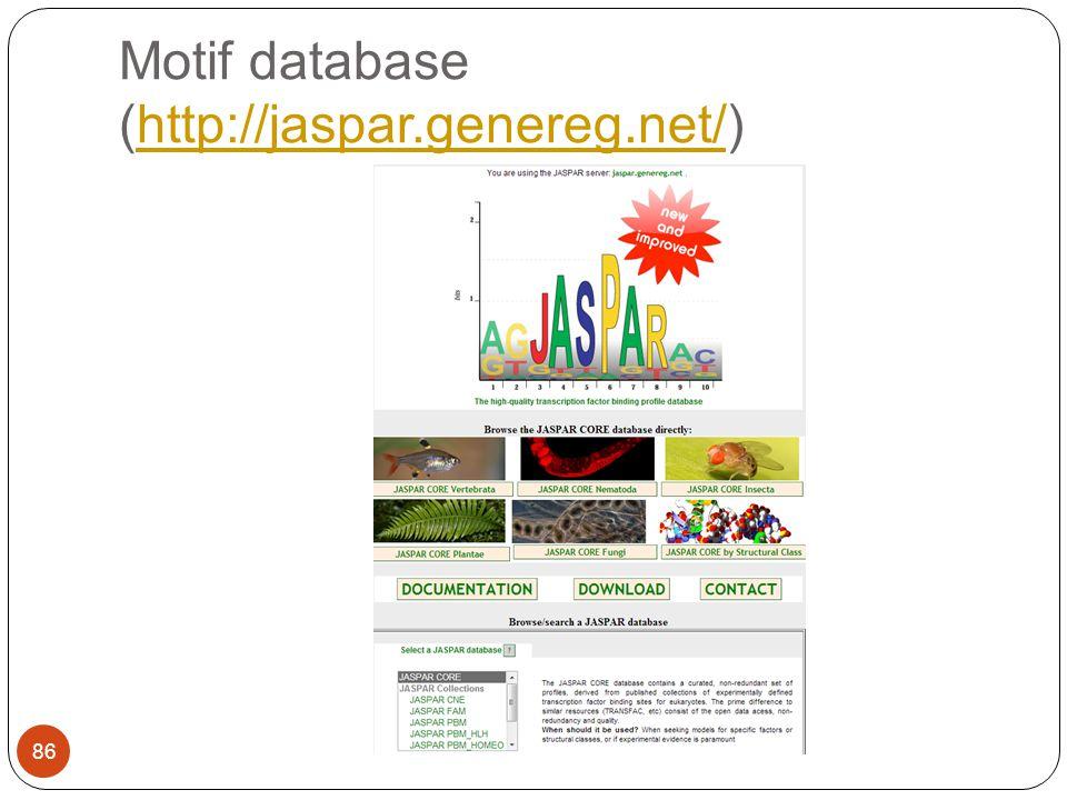 Motif database (http://jaspar.genereg.net/)