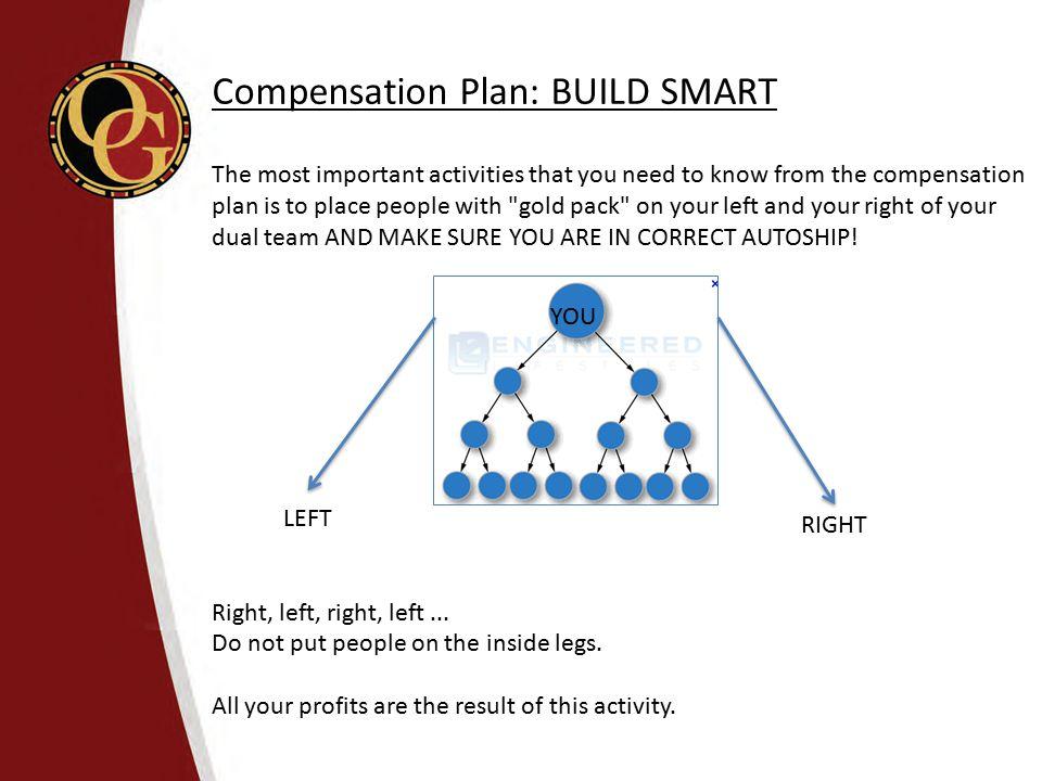 Compensation Plan: BUILD SMART