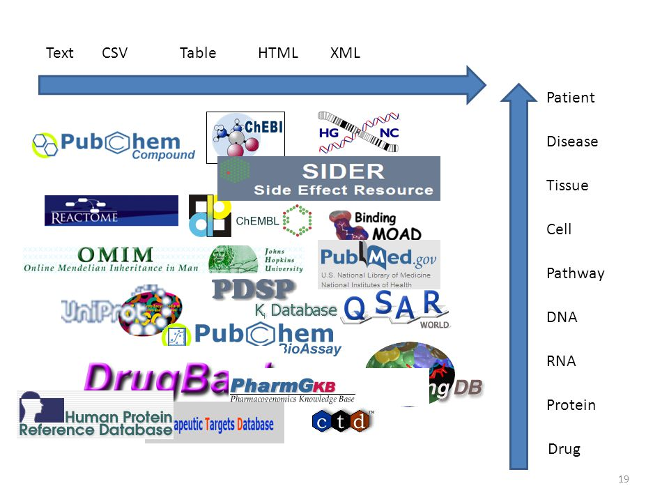 Text CSV Table HTML XML Patient Disease Tissue Cell Pathway DNA RNA Protein Drug