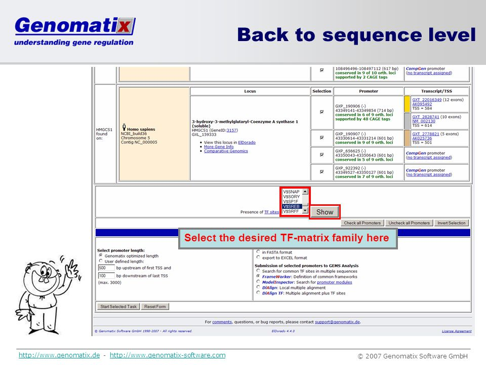 Back to sequence level Select the desired TF-matrix family here