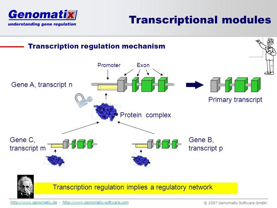 Transcription regulation implies a regulatory network