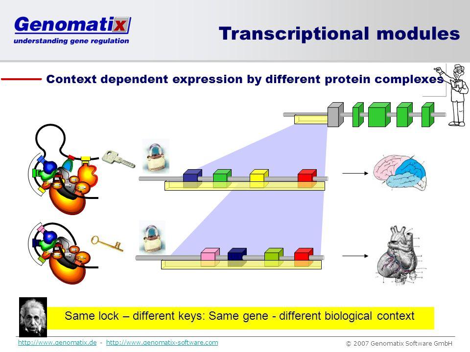Same lock – different keys: Same gene - different biological context