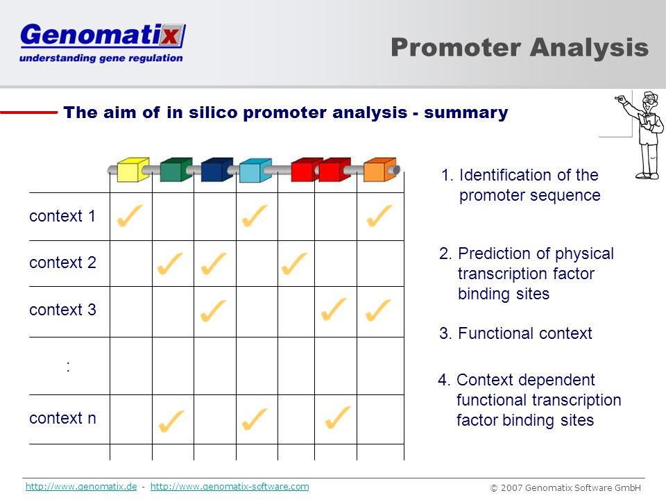 Promoter Analysis The aim of in silico promoter analysis - summary