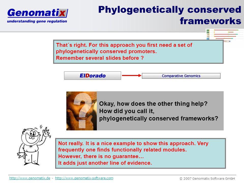 Phylogenetically conserved frameworks
