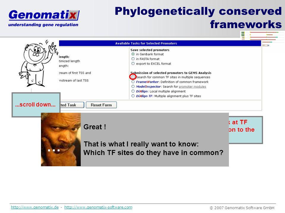 … Phylogenetically conserved frameworks Great !