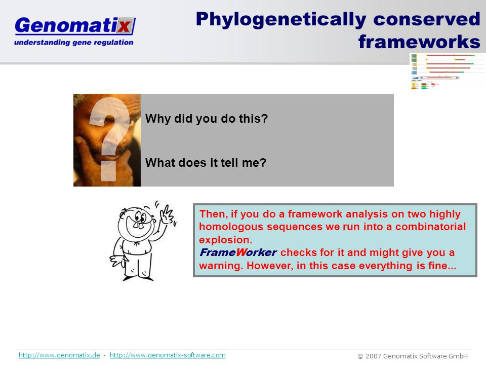 Phylogenetically conserved frameworks Why did you do this