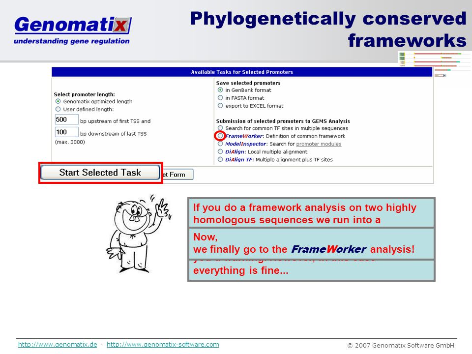 … Phylogenetically conserved frameworks Why did you do this