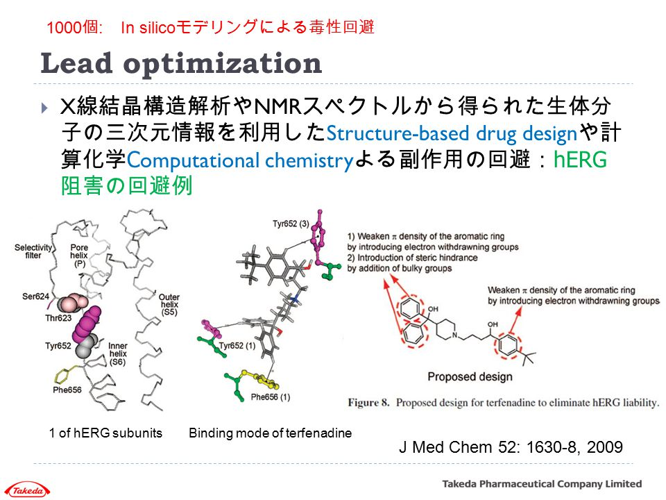 Lead optimization 1000個: In silicoモデリングによる毒性回避.
