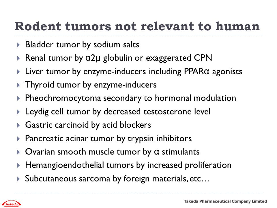 Rodent tumors not relevant to human