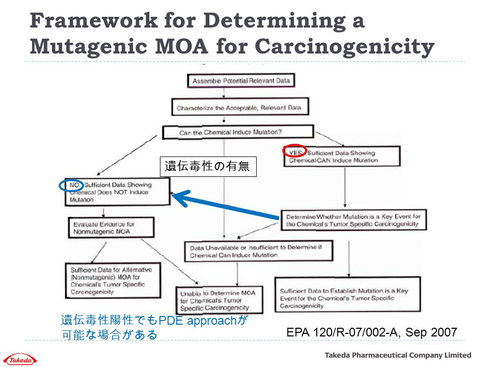 Framework for Determining a Mutagenic MOA for Carcinogenicity