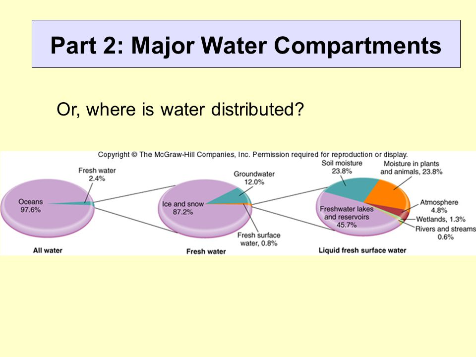 Part 2: Major Water Compartments