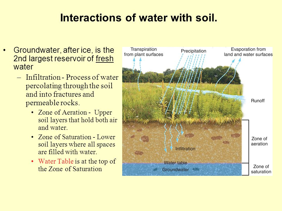 Interactions of water with soil.