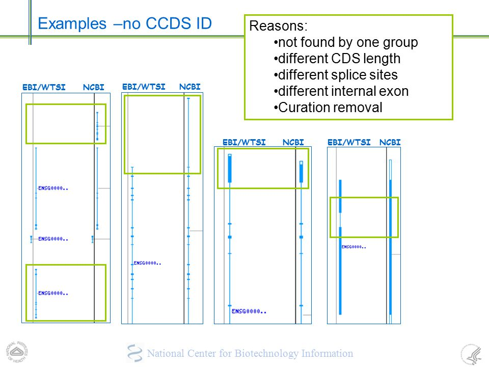 Examples –no CCDS ID Reasons: not found by one group