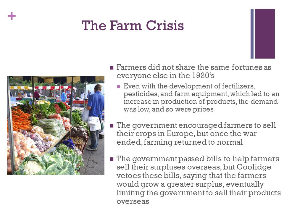 The Farm Crisis Farmers did not share the same fortunes as everyone else in the 1920's.