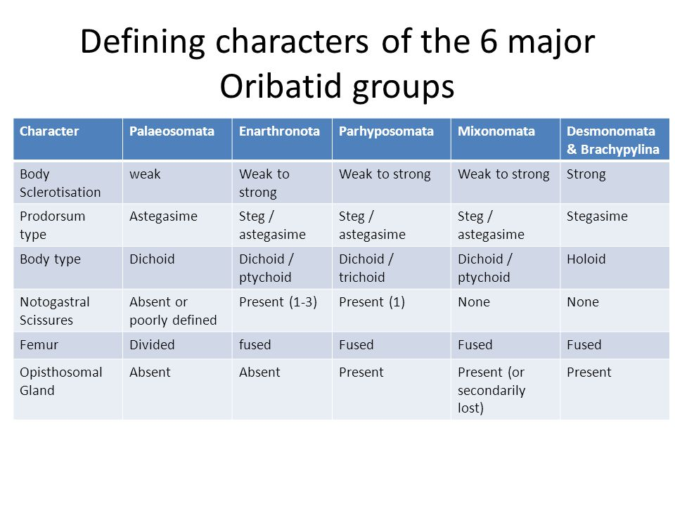 Defining characters of the 6 major Oribatid groups