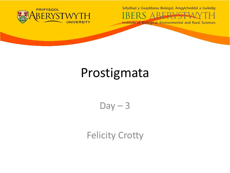 Prostigmata Day – 3 Felicity Crotty