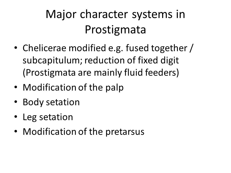 Major character systems in Prostigmata
