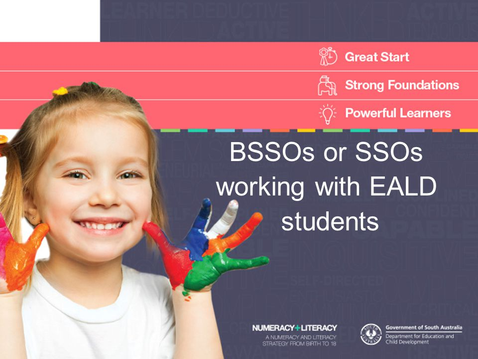 BSSOs or SSOs working with EALD students