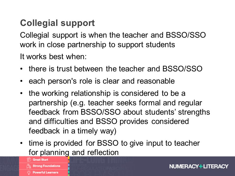 Collegial support Collegial support is when the teacher and BSSO/SSO work in close partnership to support students.