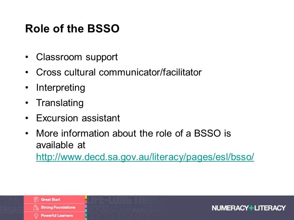Role of the BSSO Classroom support