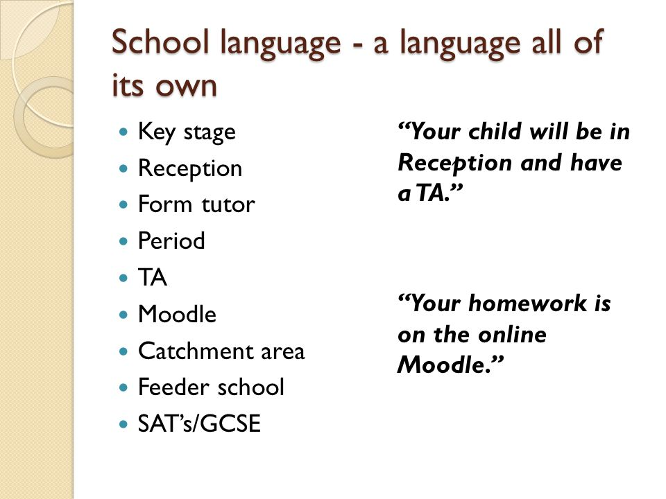 School language - a language all of its own
