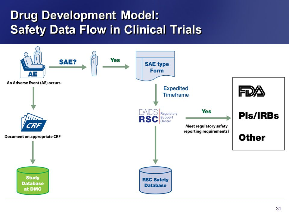Drug Development Model: Safety Data Flow in Clinical Trials
