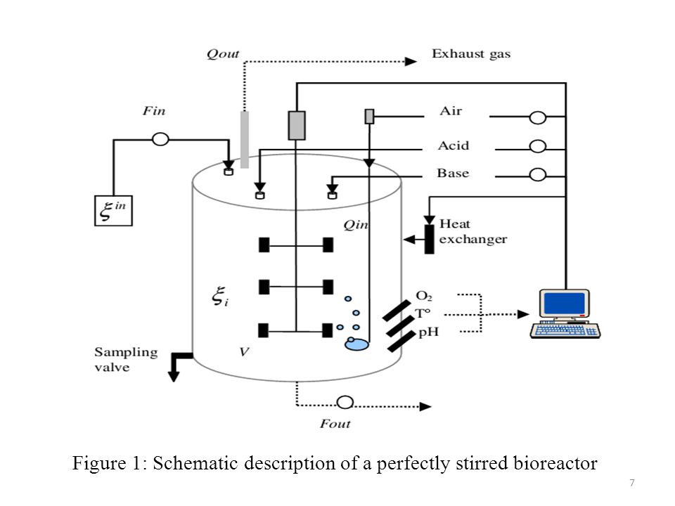 Figure 1: Schematic description of a perfectly stirred bioreactor