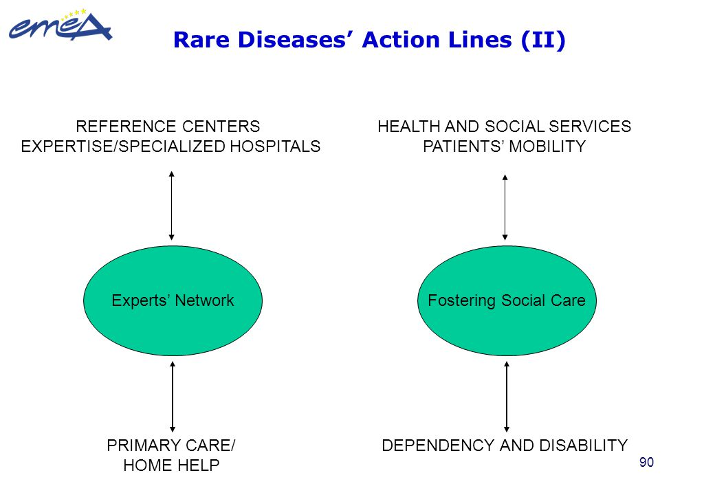 Rare Diseases' Action Lines (II)