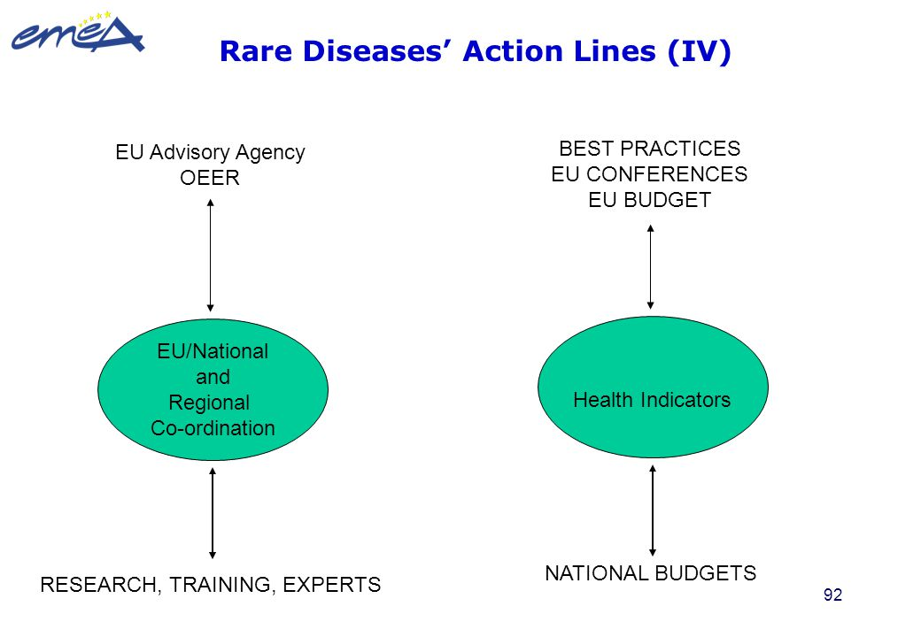 Rare Diseases' Action Lines (IV)