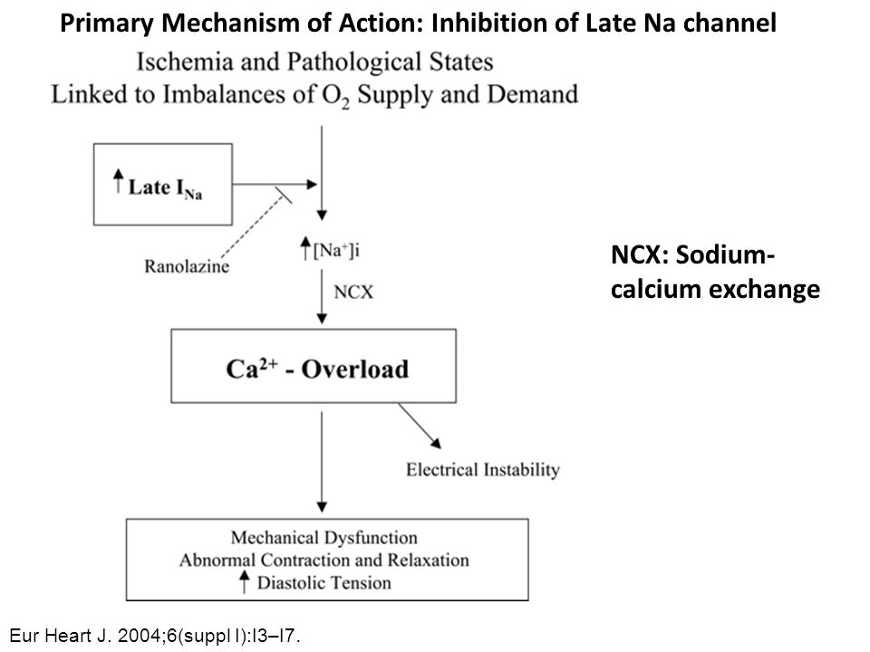 Primary Mechanism of Action: Inhibition of Late Na channel
