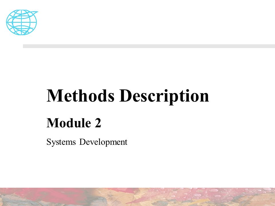 Methods Description Module 2 Systems Development
