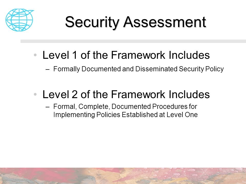 Security Assessment Level 1 of the Framework Includes