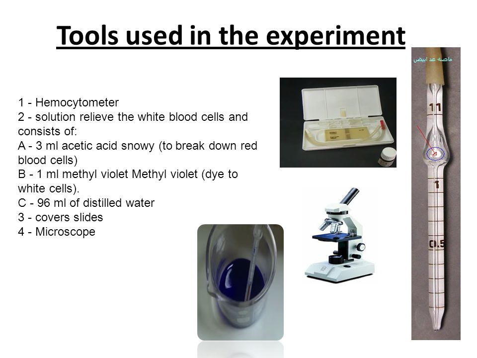 Tools used in the experiment